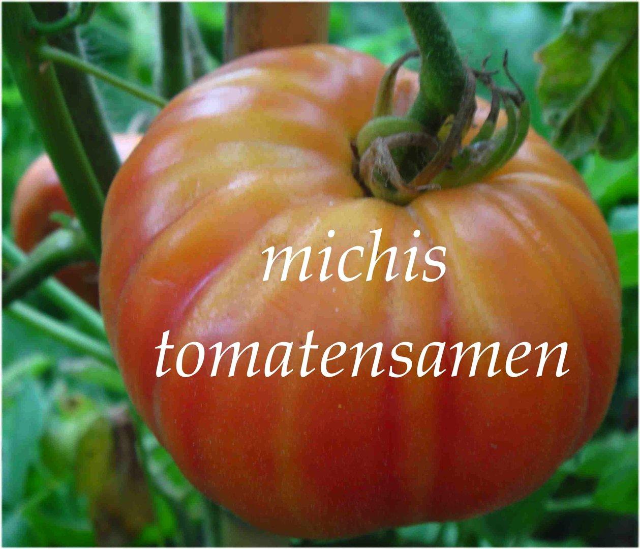 tomate ochsenherz pink