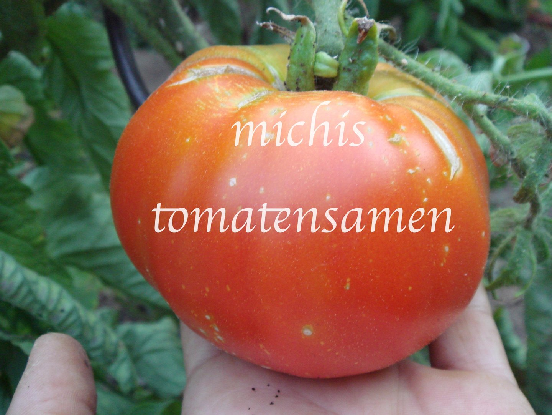 tomate peron sprayless krankheitsresistent vitamin c 10. Black Bedroom Furniture Sets. Home Design Ideas